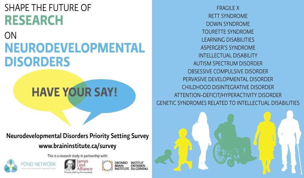 Neurodevelopmental Disorders Priority Ranking Survey flyer