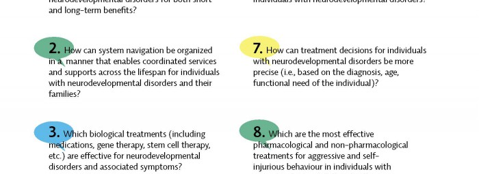 Top 10 Research Priorities for Neurodevelopmental Disorders