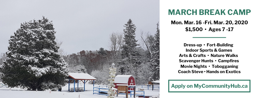 March Break at Shadow Lake. Apply with My Community Hub.